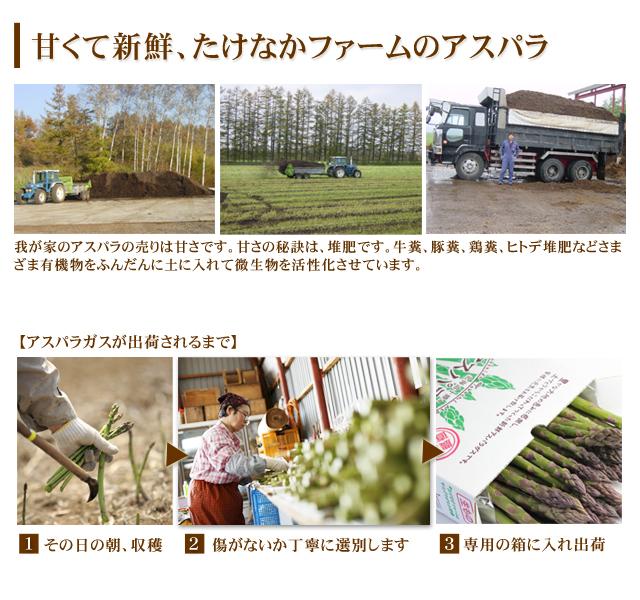北海道産 アスパラガス