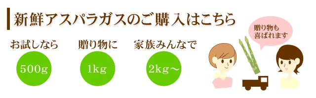 アスパラガス 通販 北海道産